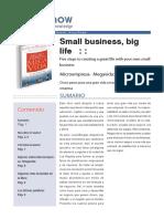 microempresa-mega-vida.pdf
