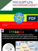 2013 Ethiopian Nec