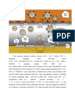 Teori Autoimun Patogenesis Multiple Sclerosis
