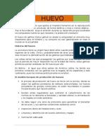HUEVO.docx