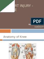 Knee Sport Injury - Martinus VT