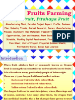 Dragon Fruits Farming, Pitaya Fruit, Pitahaya Fruit Manufacturing Plant, Detailed Project Report, Profile, Business Plan, Industry Trends, Market Research, Survey, Manufacturing Process, Machinery, Raw Materials, Feasibility Study, Investment Opportunities, Cost and Revenue, Plant Economics, Production Schedule, Working Capital Requirement, Plant Layout, Process Flow Sheet, Cost of Project, Projected Balance Sheets, Profitability Ratios, Break Even Analysis