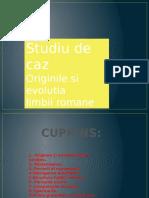 Presentation_Bajescu Iuliana.pptx