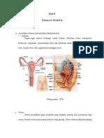 Anatomi Fisiologi Kpd 3