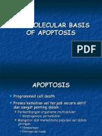 BM 11 - Apoptosis (Prof Indri)