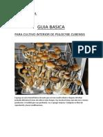 Guia basica cultivo de hongos.pdf
