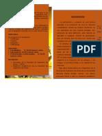 DIPTICO (1).docx