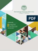 Interactive IAU E-Brochure