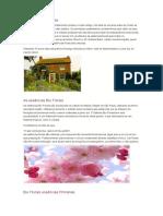 A História Dos Florais, Utilização Etc