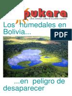 Pukara Nº 67.pdf