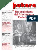 Pukara Nº 14.pdf