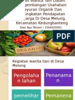 Peran Wanita Tani Dalam Pengembangan Usahatani Sayuran Organik