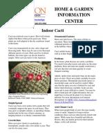 Indoor Cacti Hgic1502