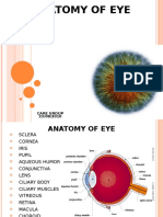 Anatomy - EYE2