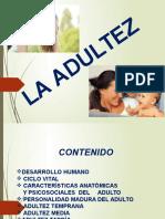 DIAPOSITIVA ADULTEZ