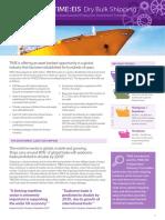 Dry Bulk Shipping INvestment, 2016