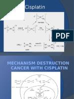 Mechanism Cisplatin