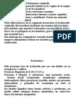 5 Trrichomona Vaginalis.ppt