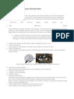 Apd Pi2 Referensi