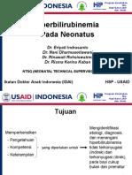 17E PP Hiperbilirubinemia DR ID