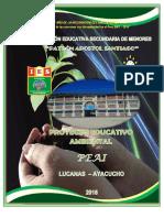 Proyecto Educativo Ambiental Integrado_PAS_Fredy_Huamaní_Flores
