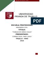 Túneles -TÚNEL SAN MARTÍN Y SANTA ROSA -LIMA ,PERU