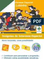 Insignias-de-Interesse-Especial-R-L-Vitor-EN.pdf