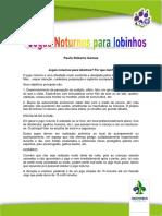 Jogos-noturnos-para-lobinhos-Paulo-SP.pdf
