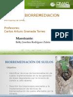 biorremediacindesuelosenbotaderosdemineriadecarbn-140924214030-phpapp02