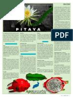 El Cultivo de La Pitaya