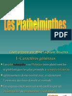 5 Plathelminthe Biologie Animal