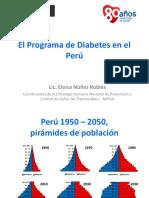 Programa Diabetes Peru