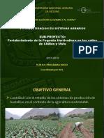 Horticultura_Investigacion.15.07.2013ppt.pdf