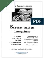 Seleção Nelson Cavaquinho - Para Banda de Música