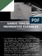 13. Daños Típicos en Pavimentos Flexibles