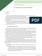 Dispositivos Básicos de Aprendizaje (DBA)