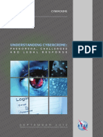 Cybercrime legislation EV6.pdf