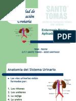NECESIDAD_DE_ELIMINACION_URINARIA.pdf