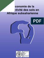 L'economie de la productivite des sols en Afrique