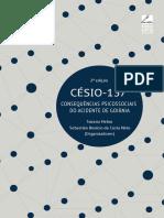 E-Book Cesio 137
