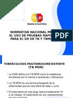 Normativa p. Rapidas Dx Tb 2012