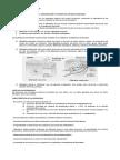 BIO 2 Sistema Endocrino