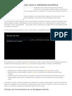 Biodigestores - Princípio, tipos e viabilidade econômica - Portal Residuos Solidos.pdf