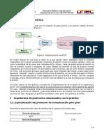 Implementación de Protocolos P2P