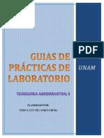 Guia de Práctica Tecnologia II