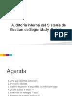 Modelo de Auditoria en Sg Sst