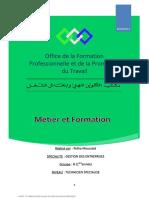 Rapprot - Métier Et Formation