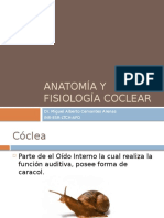 Fisiologia de La Coclea