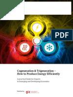 Giz2016 en Energy Cogeneration Trigeneration Guide