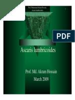 Ascaris Lumbricoides Akram